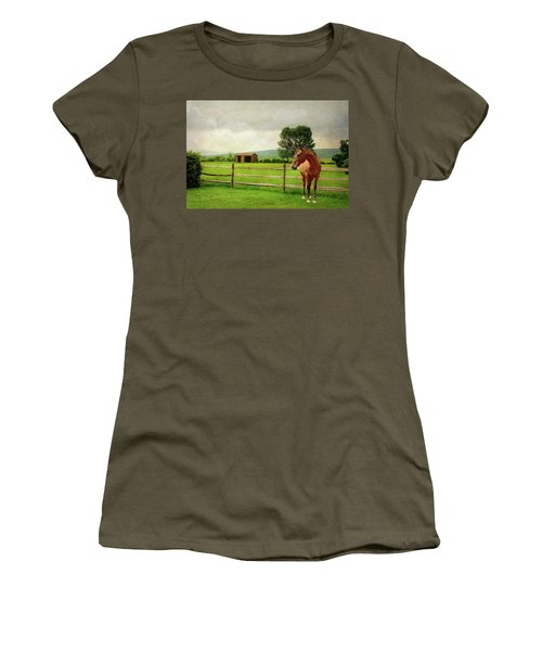 Women's T-Shirt (Junior Cut) featuring the photograph Stallion At Fence by Diana Angstadt