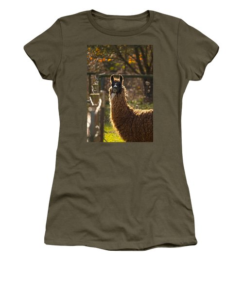 Staring Llama Women's T-Shirt (Athletic Fit)