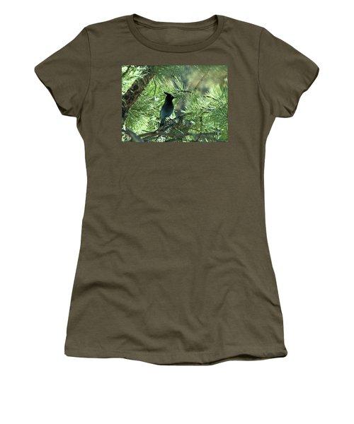 Stellarjay1 Women's T-Shirt