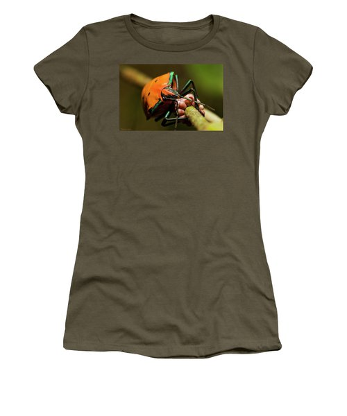 Stink Bug 666 Women's T-Shirt (Junior Cut) by Kevin Chippindall