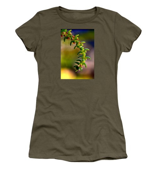 Succulent Hanging Women's T-Shirt (Athletic Fit)