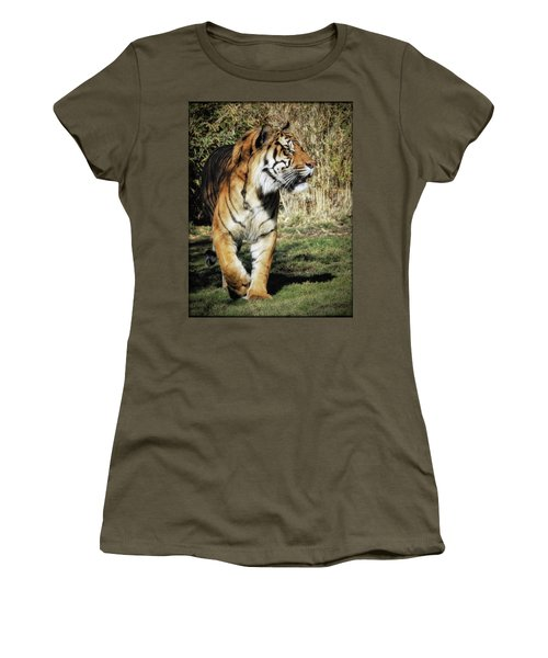Sumatran Tiger  Women's T-Shirt