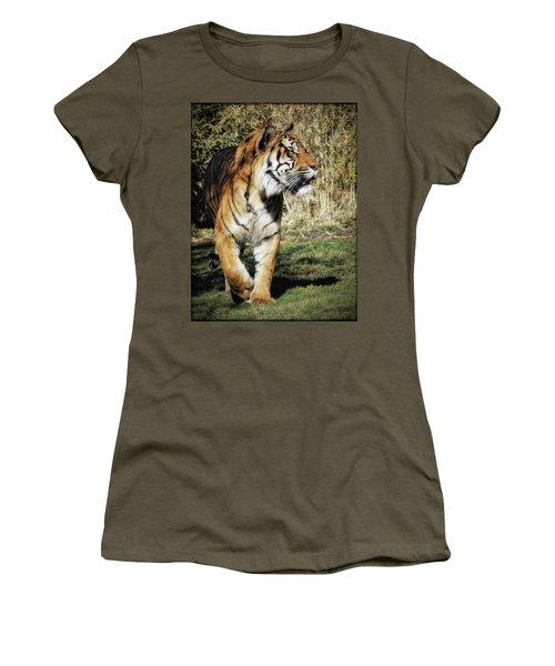 Sumatran Tiger  Women's T-Shirt