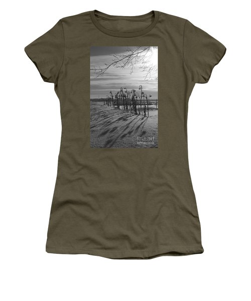 Sunflowers In The Winter Sun Women's T-Shirt