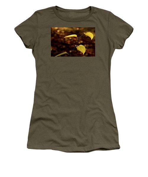 Sunlite Greenbriar Stem Beside The Stream Women's T-Shirt (Athletic Fit)