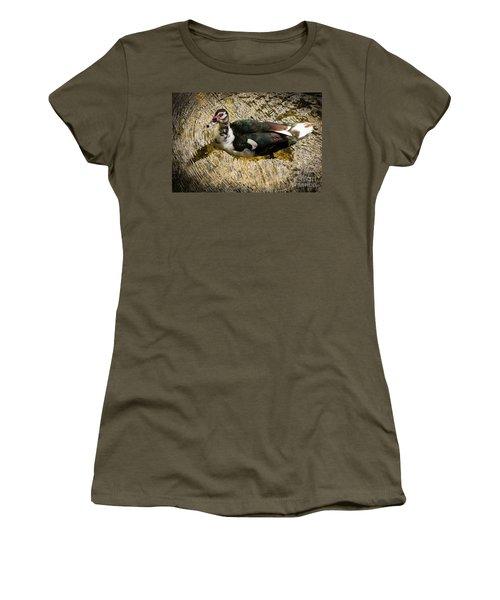 Swimming In Gold Wildlife Art By Kaylyn Franks Women's T-Shirt