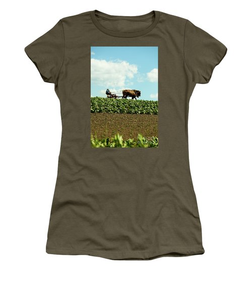 The Amish Farmer With Horses In Tobacco Field Women's T-Shirt