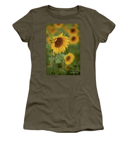 The Close Up Of Sunflowers Women's T-Shirt