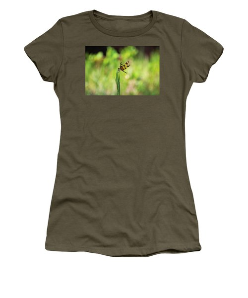 Women's T-Shirt (Athletic Fit) featuring the photograph The Liberation by Michiale Schneider