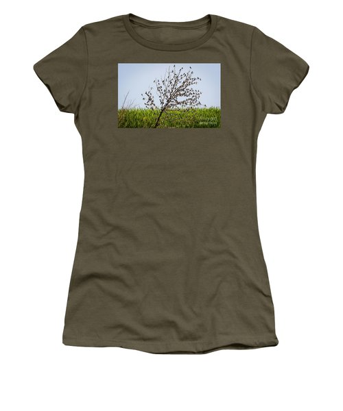 Women's T-Shirt (Athletic Fit) featuring the photograph The More The Merrier- Tree Swallows  by Ricky L Jones
