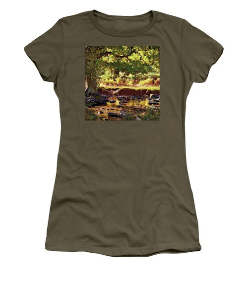 The River Lin , Bradgate Park Women's T-Shirt (Athletic Fit)