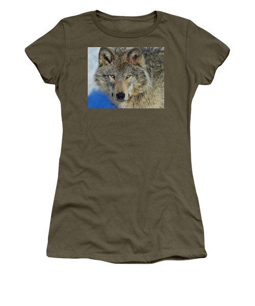 Timber Wolf Portrait Women's T-Shirt