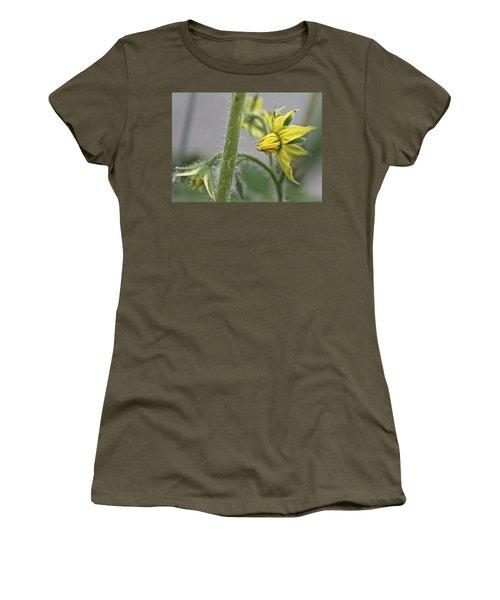 Tomato Babies 3 Women's T-Shirt
