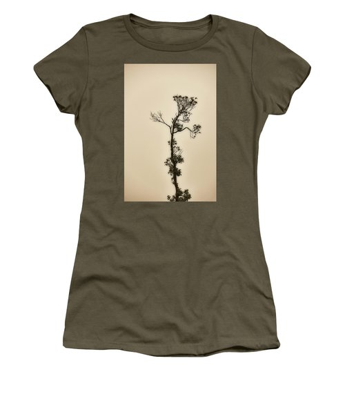 Tree In The Mist Women's T-Shirt (Athletic Fit)