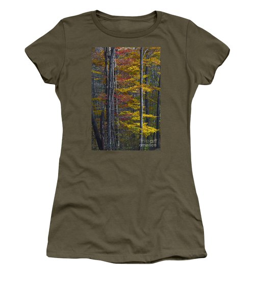 Trees With Autumn Colors 8260c Women's T-Shirt
