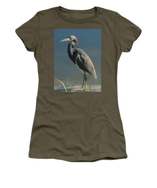 Tricolored Heron Women's T-Shirt