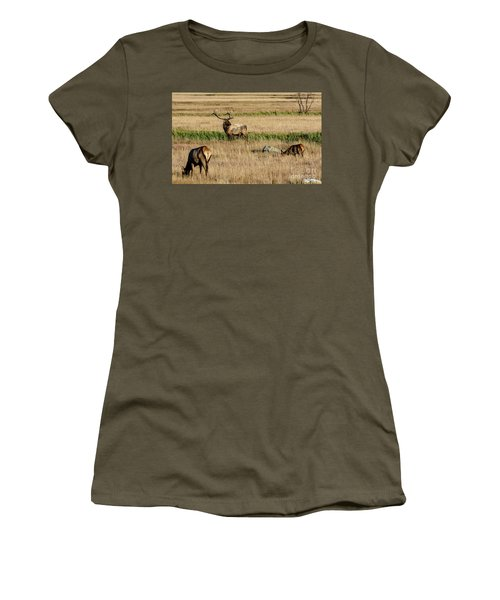 Women's T-Shirt featuring the photograph Trifecta by Bitter Buffalo Photography