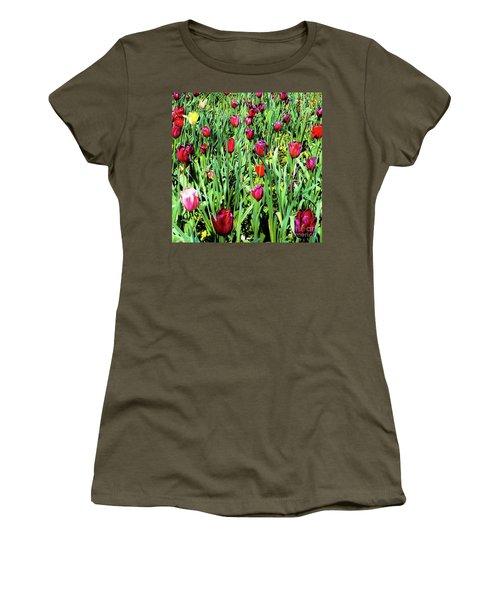 Tulips Blooming Women's T-Shirt