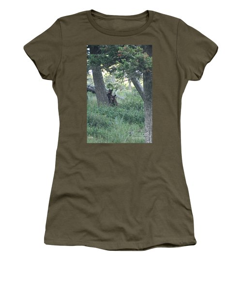 Two Bear Cubs Women's T-Shirt