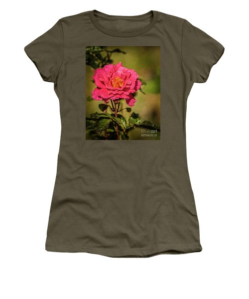 Vignetted  Rose Women's T-Shirt (Junior Cut) by Robert Bales