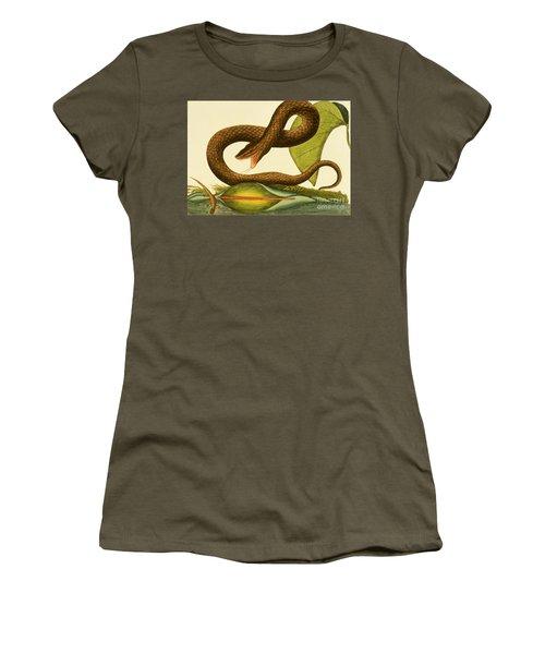 Viper Fusca Women's T-Shirt (Junior Cut) by Mark Catesby