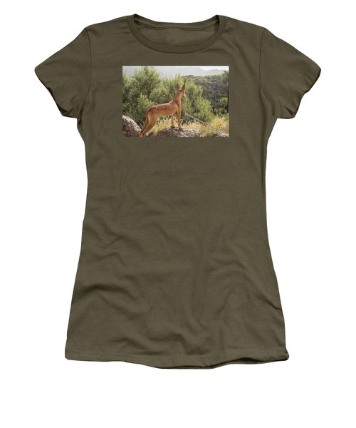 Watchful Dog Women's T-Shirt (Junior Cut) by Patricia Hofmeester