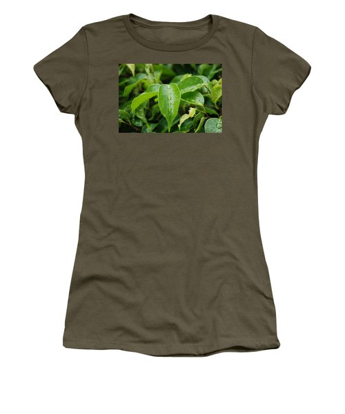 Women's T-Shirt (Junior Cut) featuring the photograph Wet Bushes by Rob Hans