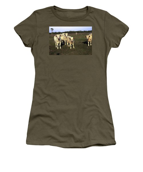 Women's T-Shirt (Junior Cut) featuring the photograph White Cows by Sally Weigand