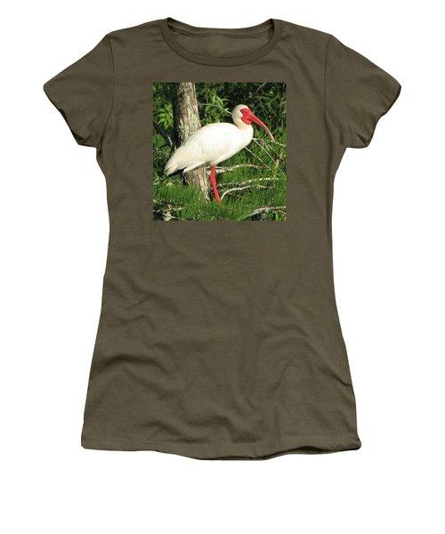 White Ibis Women's T-Shirt (Athletic Fit)