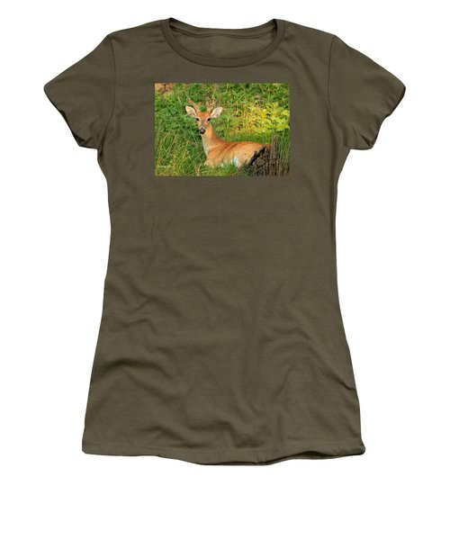 White-tail Buck Resting Women's T-Shirt