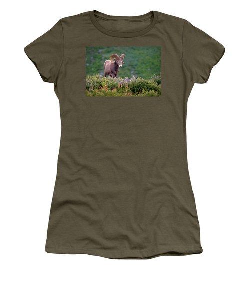 Wild Journey Women's T-Shirt