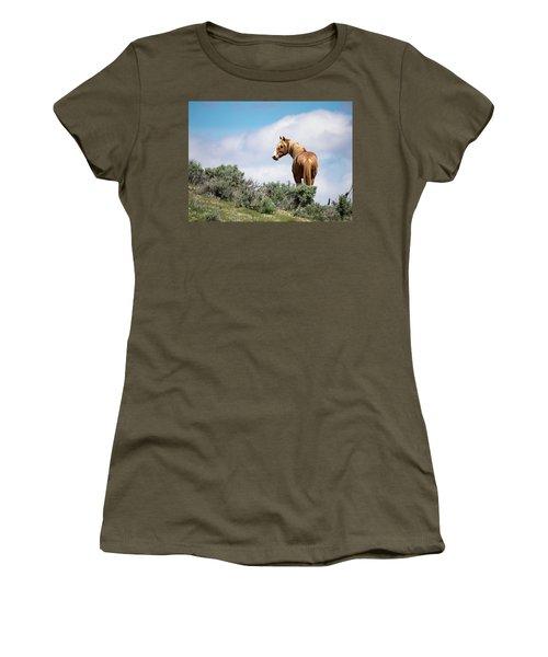 Wild Mustang Stallion Of Sand Wash Basin Women's T-Shirt