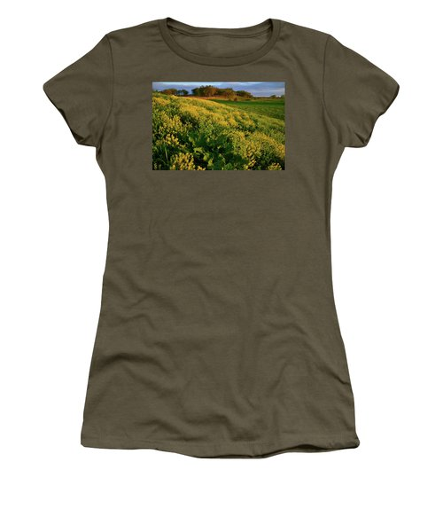 Wildflowers In Hackmatack National Wildlife Refuge Women's T-Shirt (Athletic Fit)