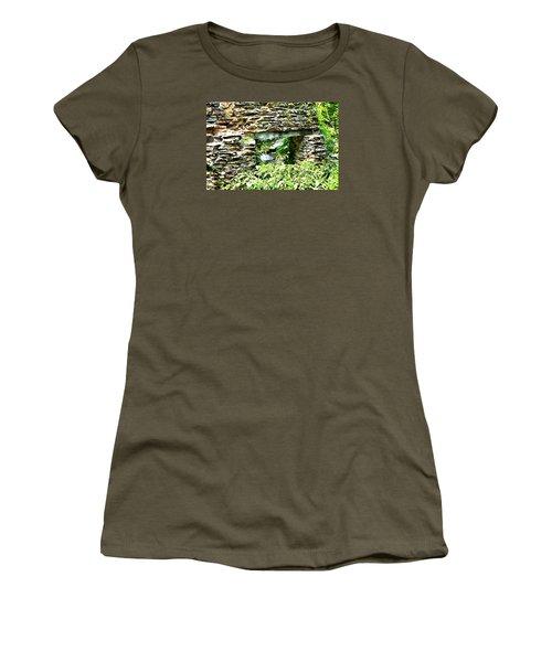 Window View Of Sope Creek Women's T-Shirt (Junior Cut) by James Potts