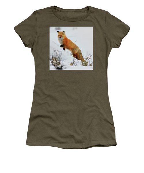 Winter Fox Women's T-Shirt