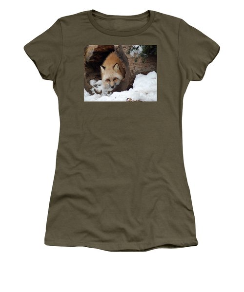 Winter Fox Women's T-Shirt (Junior Cut) by Richard Bryce and Family