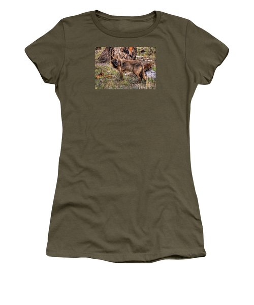 Wolf Looking Back Women's T-Shirt (Junior Cut) by CR  Courson
