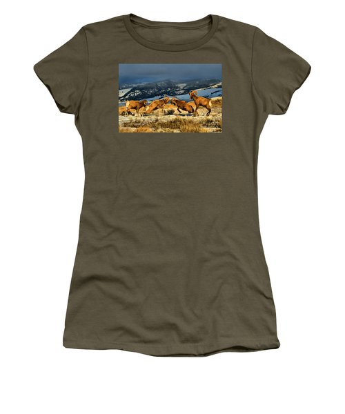 Women's T-Shirt (Junior Cut) featuring the photograph Wyoming Bighorn Brawl by Adam Jewell
