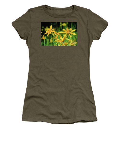 Yellow Daisies Women's T-Shirt