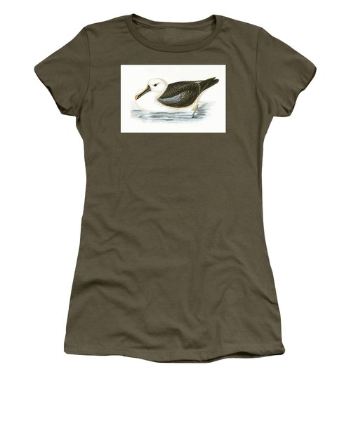 Yellow Nosed Albatross Women's T-Shirt (Junior Cut) by English School