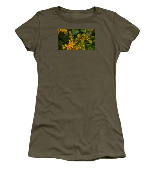 Yellow Sedum Women's T-Shirt (Junior Cut) by Richard Brookes