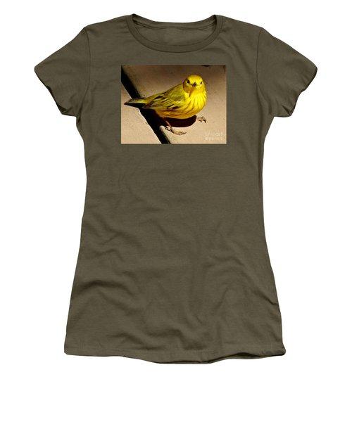 Yellow Warbler Women's T-Shirt
