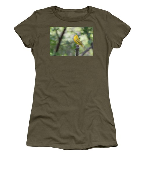 Yellow Warbler In Song Women's T-Shirt (Athletic Fit)