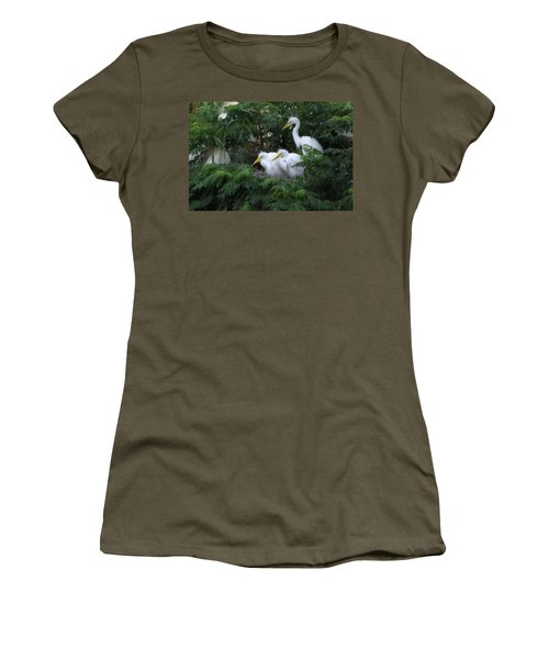 Young Egrets Fledgling And Waiting For Food-digitart Women's T-Shirt (Athletic Fit)