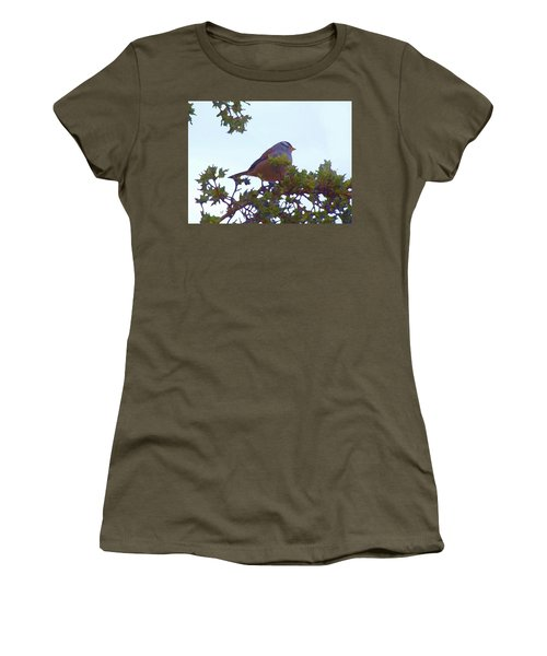 White Crowned Sparrow In Cedar Women's T-Shirt