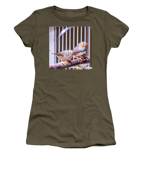 Zebra Finch Pair Women's T-Shirt
