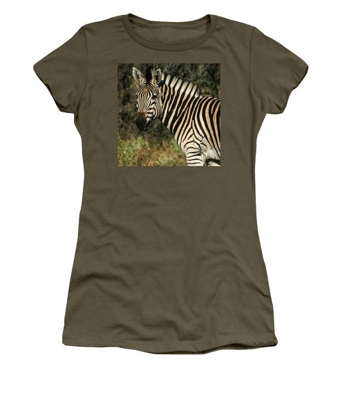 Zebra Watching Sq Women's T-Shirt