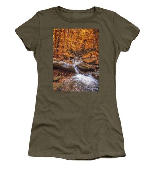 Amicalola Falls Women's T-Shirt