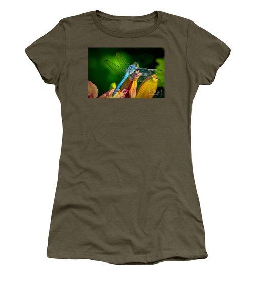 Blue Dragonfly Women's T-Shirt