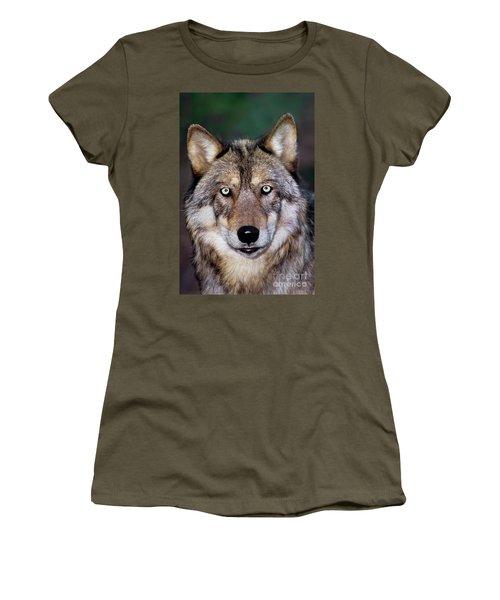 Gray Wolf Portrait Endangered Species Wildlife Rescue Women's T-Shirt